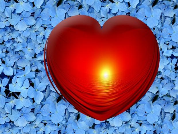 heart-102700_1920